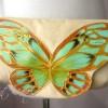 Little Golden Butterfly