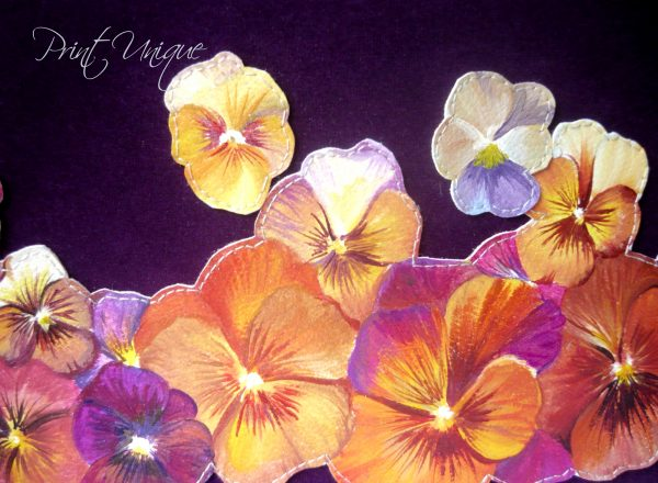 purple-pansy3