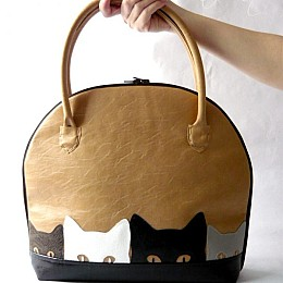 Bag of kittens